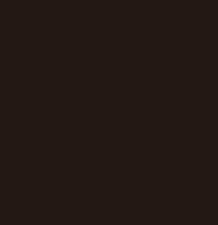 イージーオーダー01ロゴ